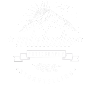 MT Studio